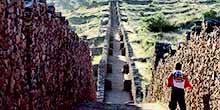 Como visitar Piquillacta no Vale do Sul de Cusco?